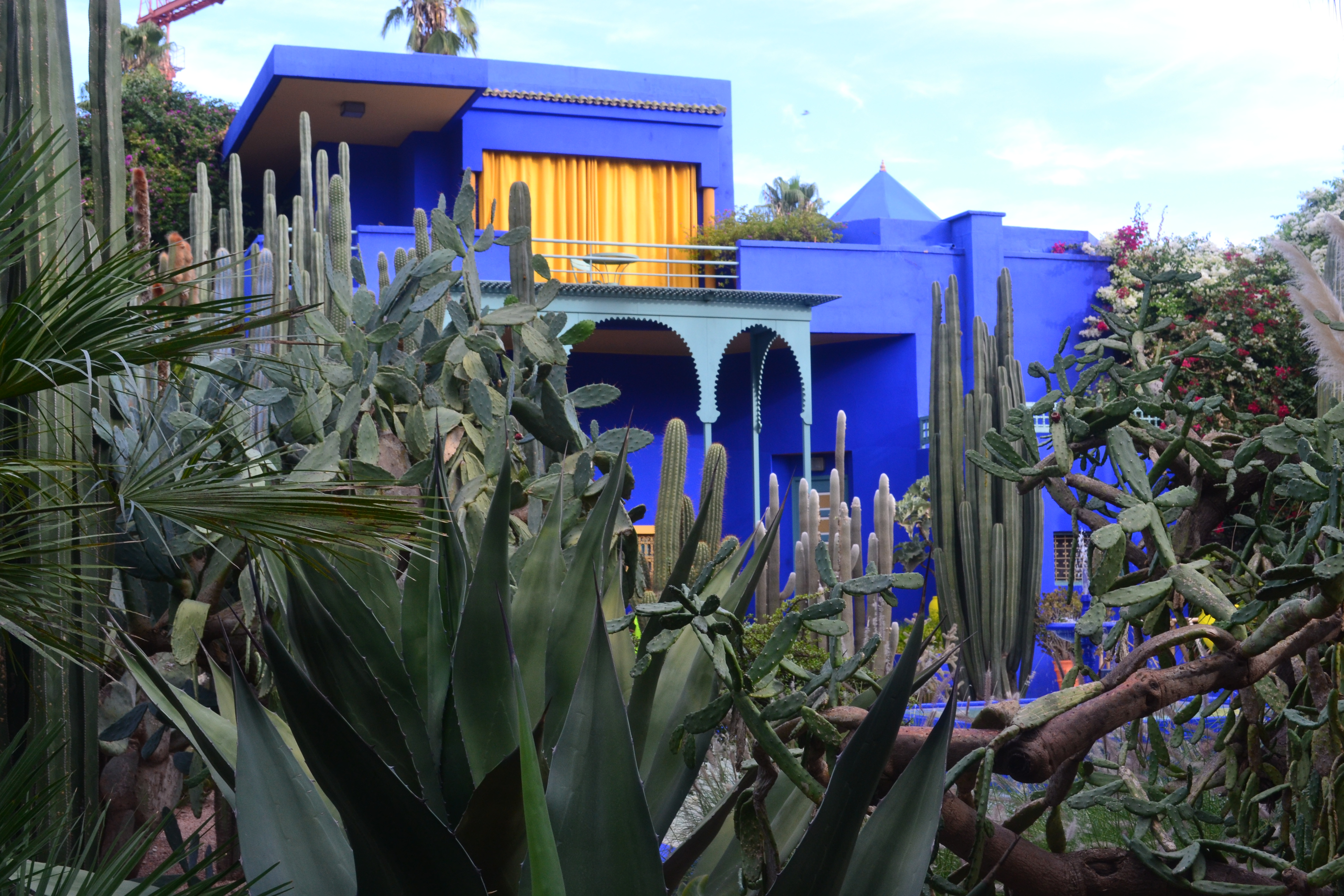 2eme jour au maroc visite du jardin majorelle du ksar for Jardin majorelle 2015